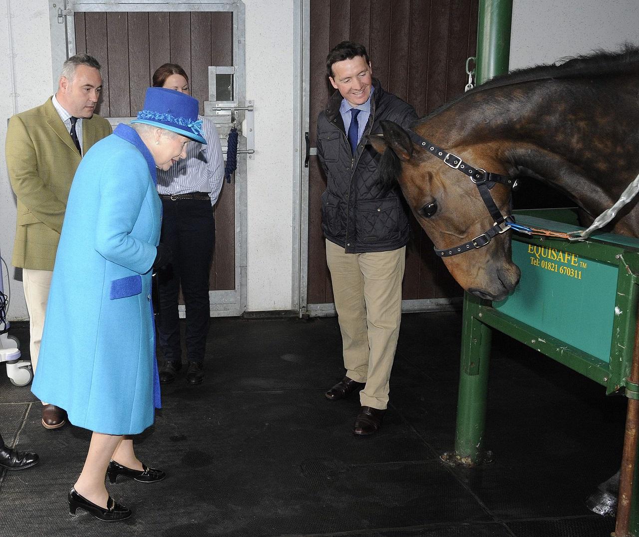 Tesco-utalványt nyert lóversenyen az angol királynő