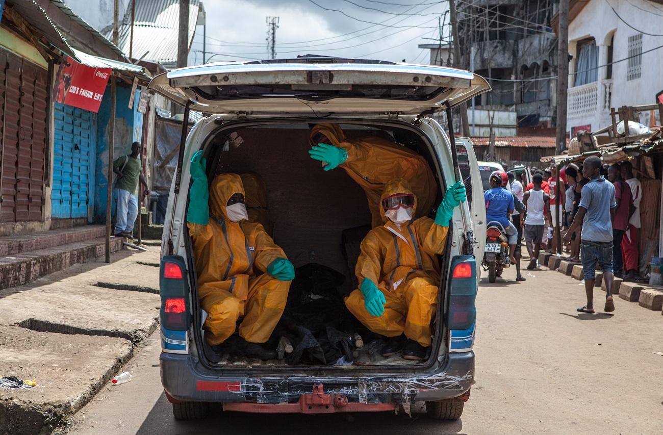 Amikor egy fertőzött kakas fejével fociznak a gyerekek, akkor kezd el terjedni a madárinfluenza