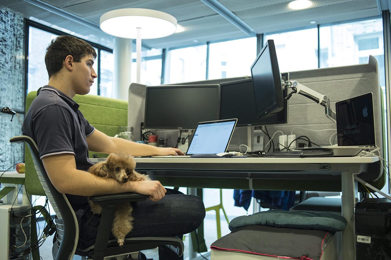 Egyesül vetélytársával a LogMeIn, egymilliárd dolláros évi forgalmú vállalat jön létre