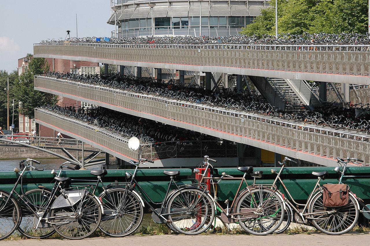ENSZ: Annyit bicikliznek a hollandok, hogy az felér évi 54 millió fa elültetésével