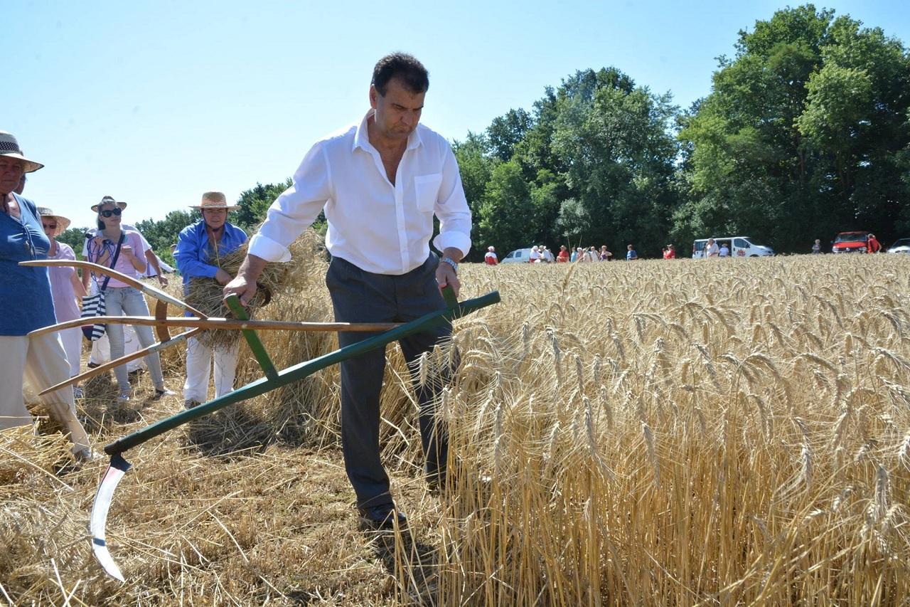 A fideszes képviselő előbb eladta a földjeit az önkormányzatnak, az önkormányzat EU-s pénzből rendbe tette őket, aztán nyomott áron visszavásárolhatott mindent