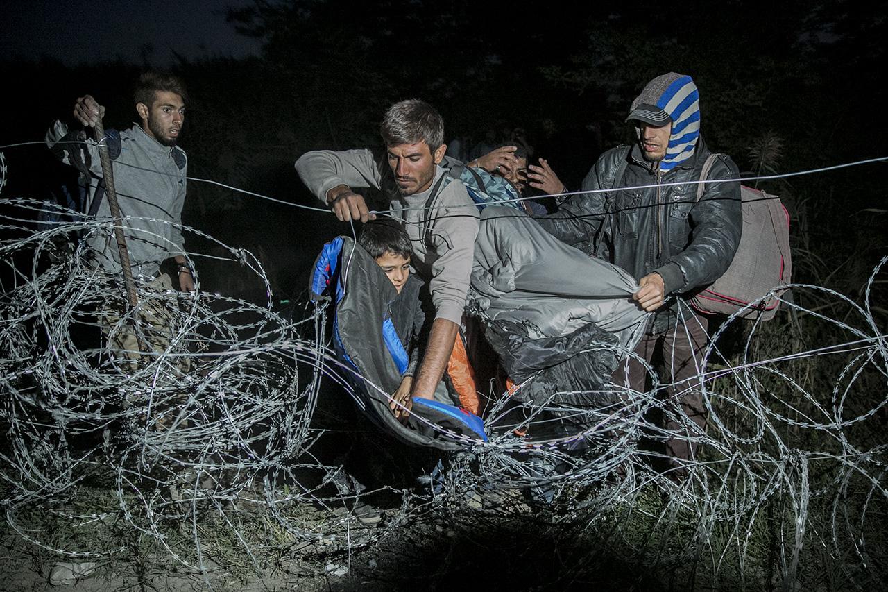 Fideszes EP-képviselő: malacfejeket kell rakni a határkerítésre, azok elriasztják a muszlim migránsokat