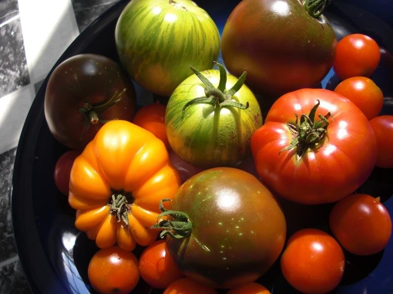 Ként találtak a LOLO tomato veggie snack paradicsomcsipszben, a Nébih visszahívta