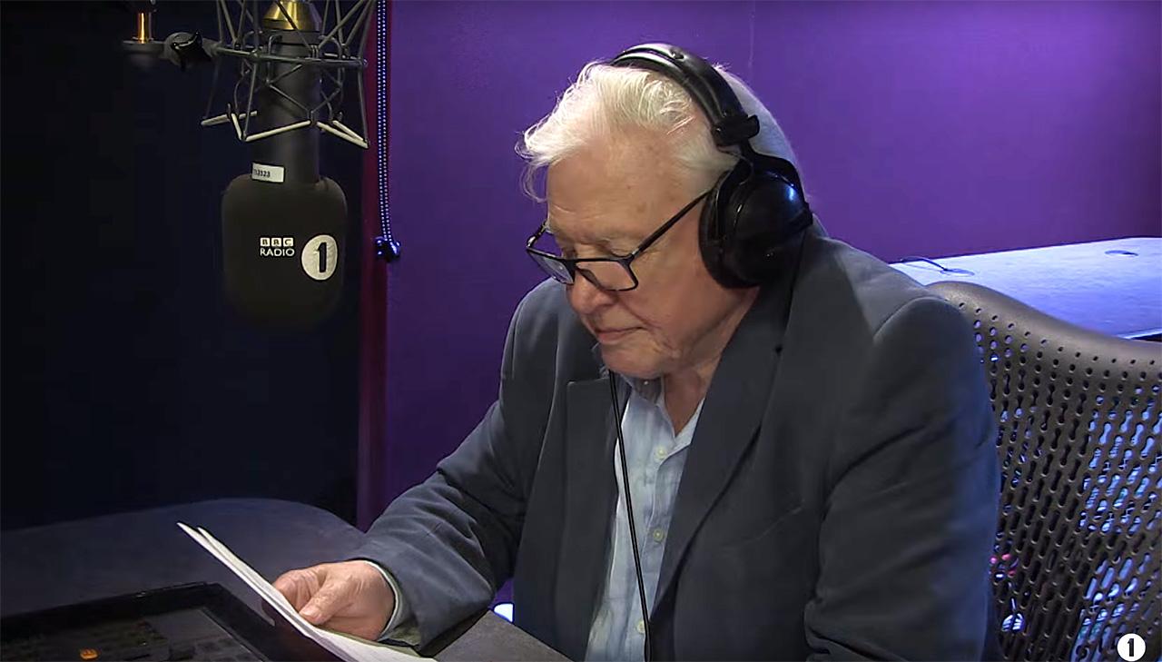 Csodálatos felvétel: Sir David Attenborough narrálja Adele új videóklipjét