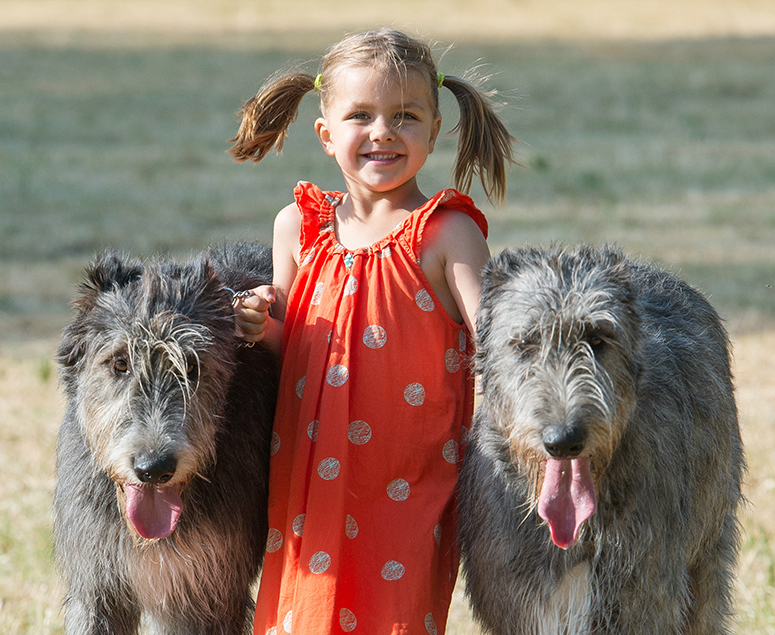 Délkelet-ázsiai találmány lehet a kutya
