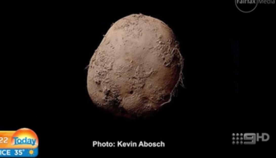 300 millió forintért adta el egy krumpliról készült fényképét az ír fotós egy rejtélyes beborozott üzletembernek