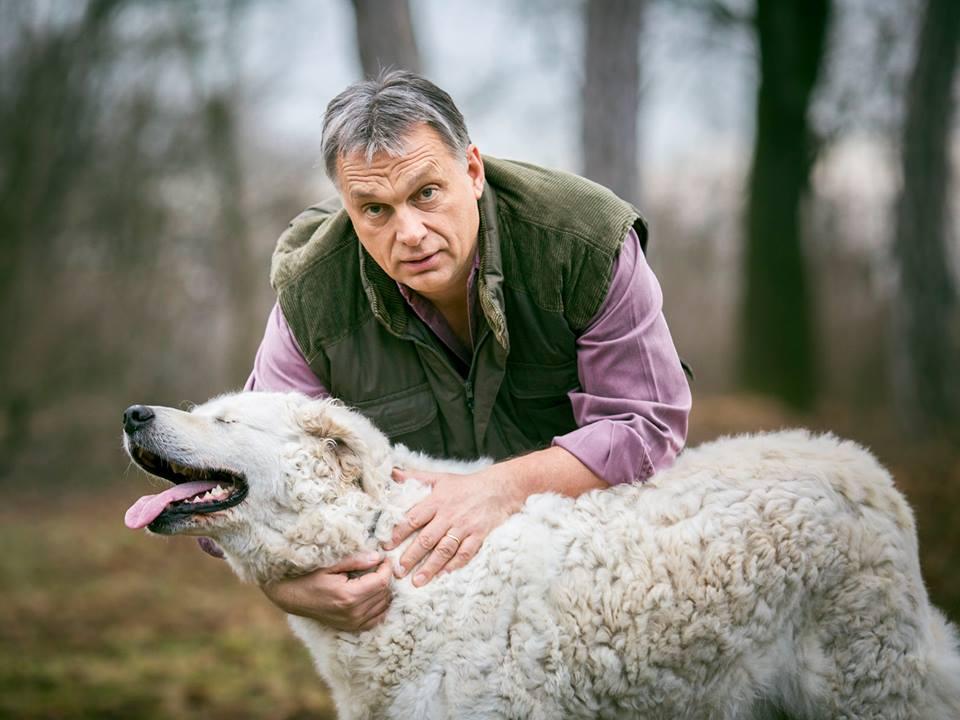 Orbán Viktor elképesztően gyorsan reagált egy mindenkit feszítő közügyre