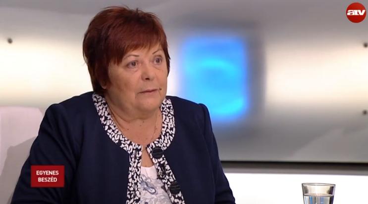 Az NVI elnöke szerint a 25 kopasz akár be is nyújthatott volna népszavazási kezdeményezést