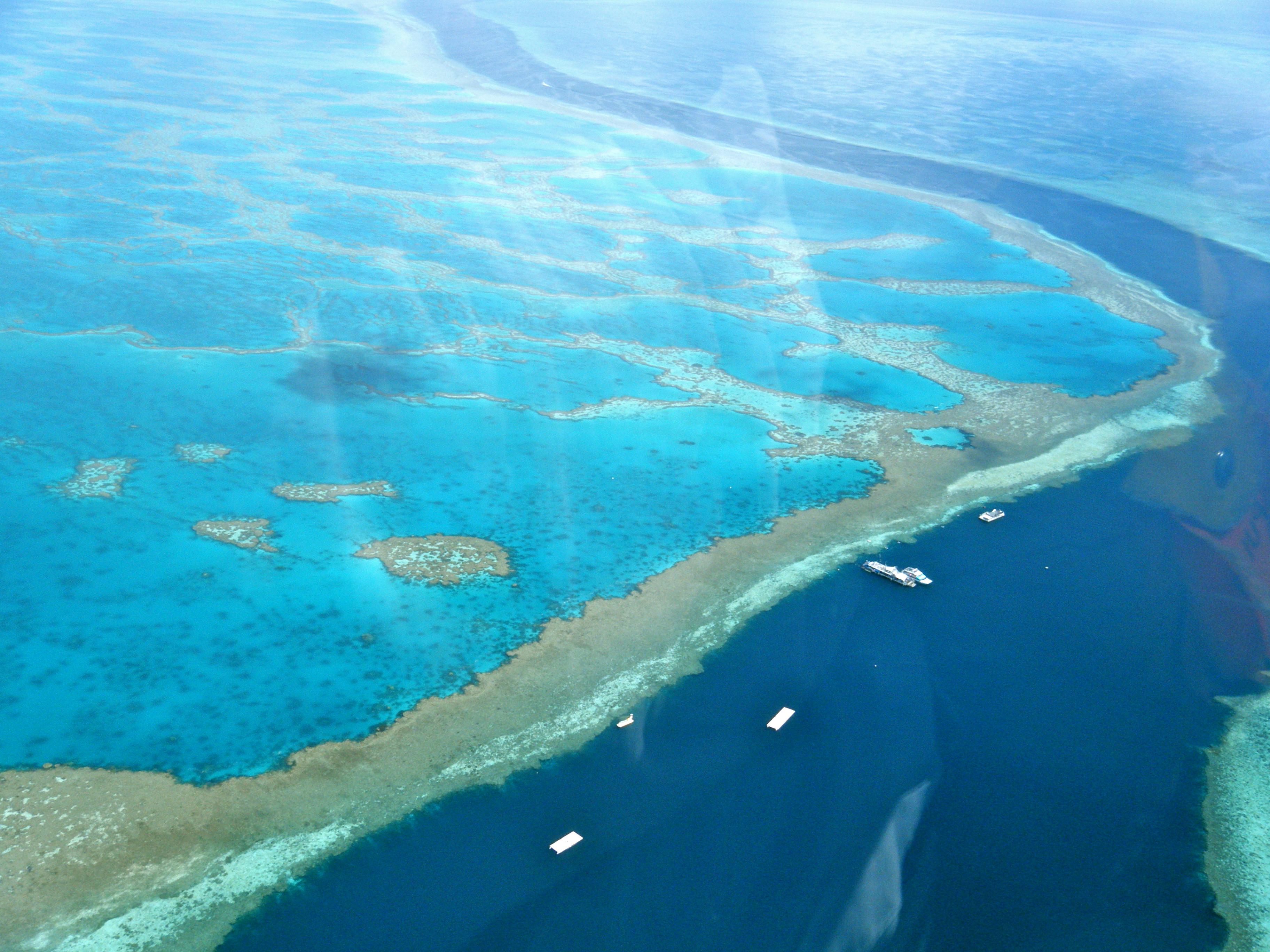 Veszélyeztetetté nyilvánítaná a Nagy-Korallzátonyt az Unesco