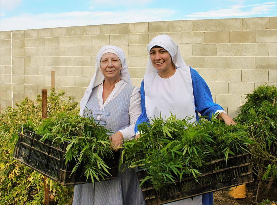 Marihuánát termesztő 56 éves hippinővér mutatja meg, hogy érdemes vállalkozni Amerikában