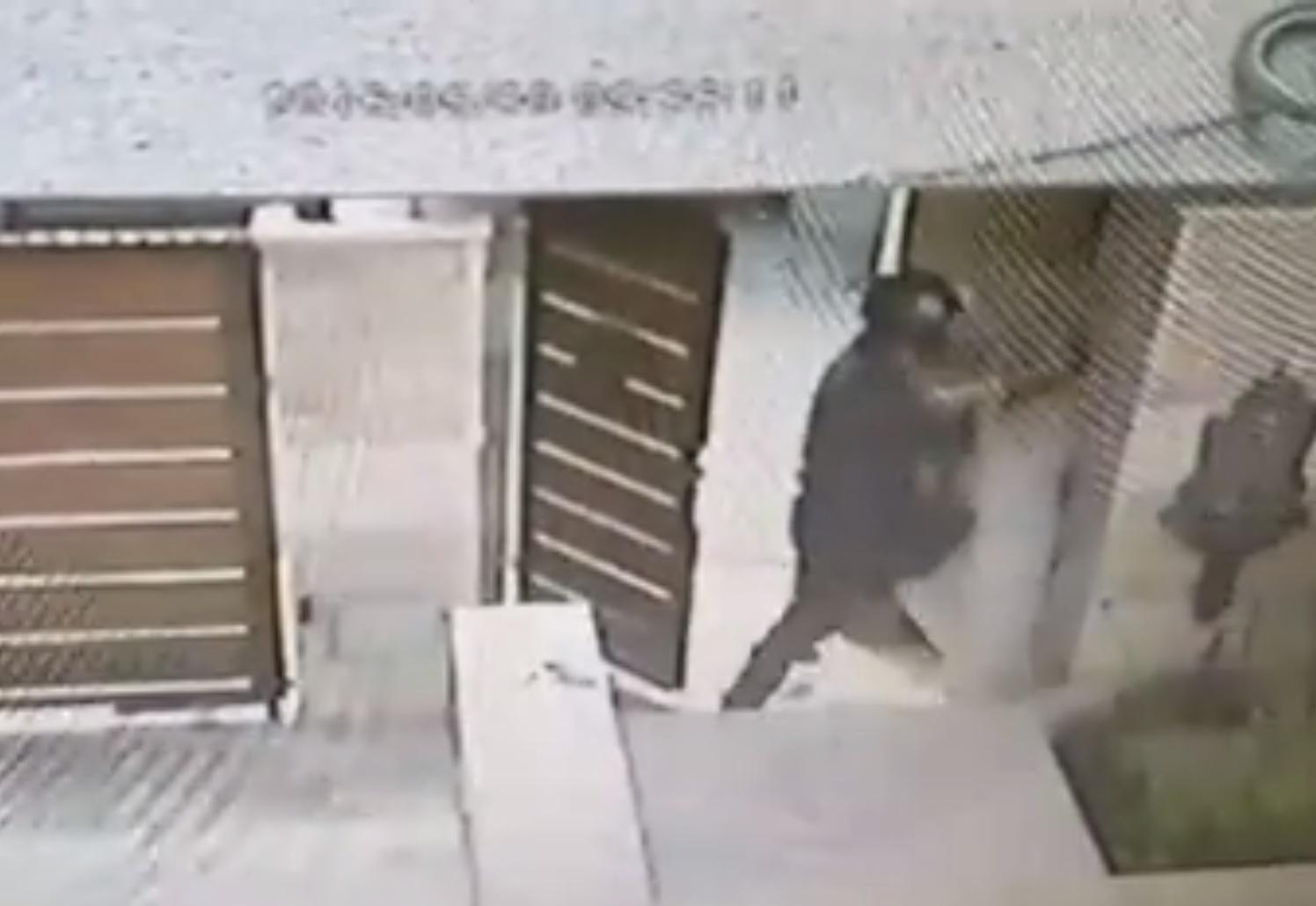Becsöngetett, hogy csomagot hozott, és amikor a nő kinyitotta az ajtót, megpróbálta megfojtani