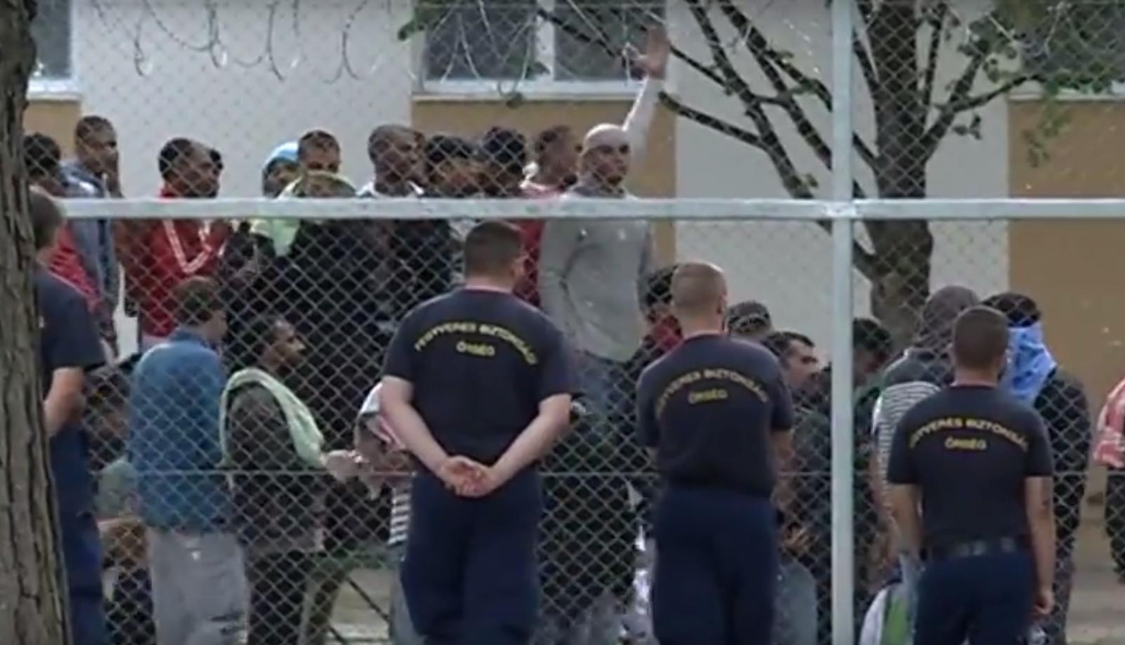 Egy kormánytisztviselő megütött, és fojtogatott egy algériait a kiskunhalasi menekülttáborban