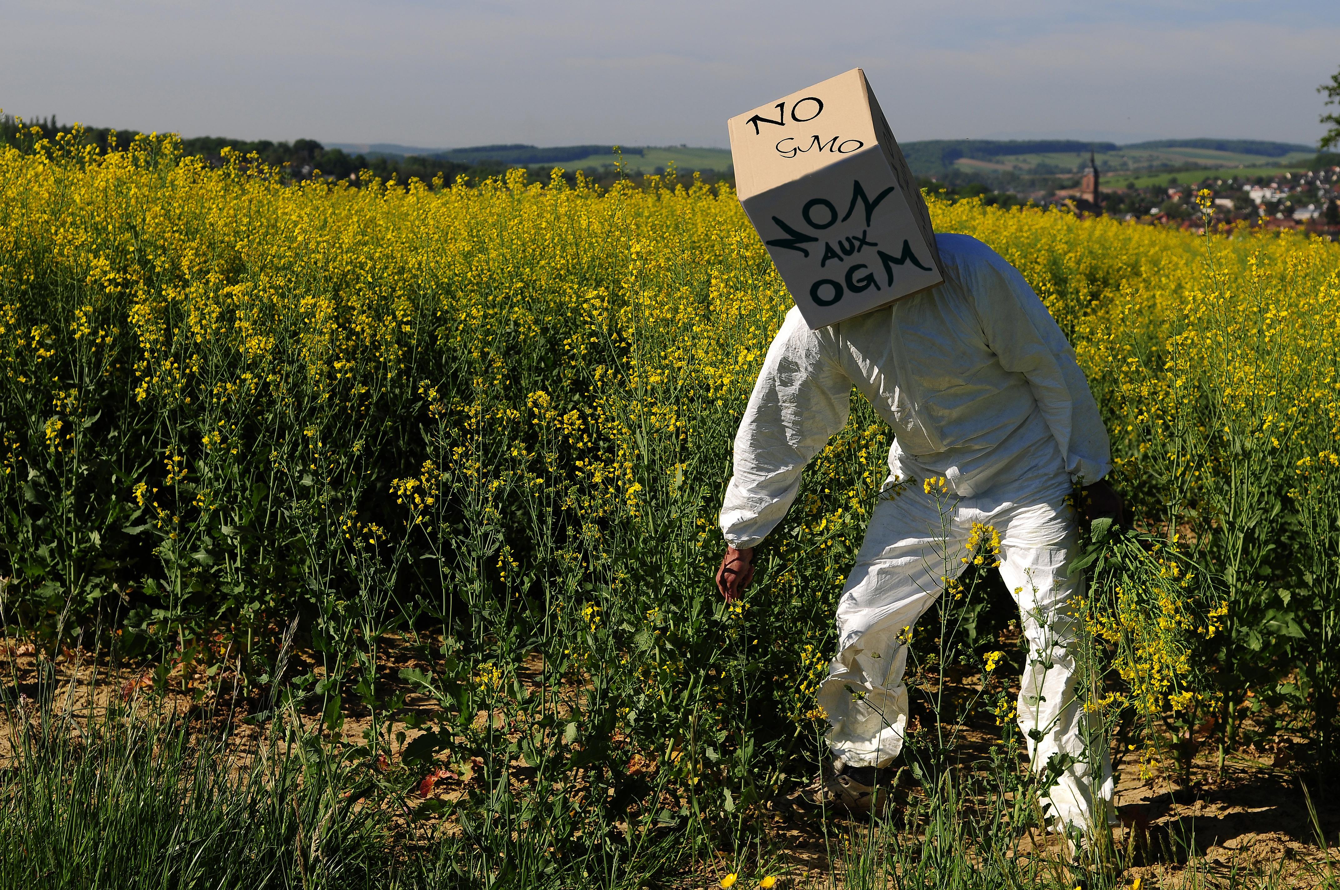 A kormány döntött az élelmiszerbiztonság erősítésére hozandó büntetőjogi szabályozásról