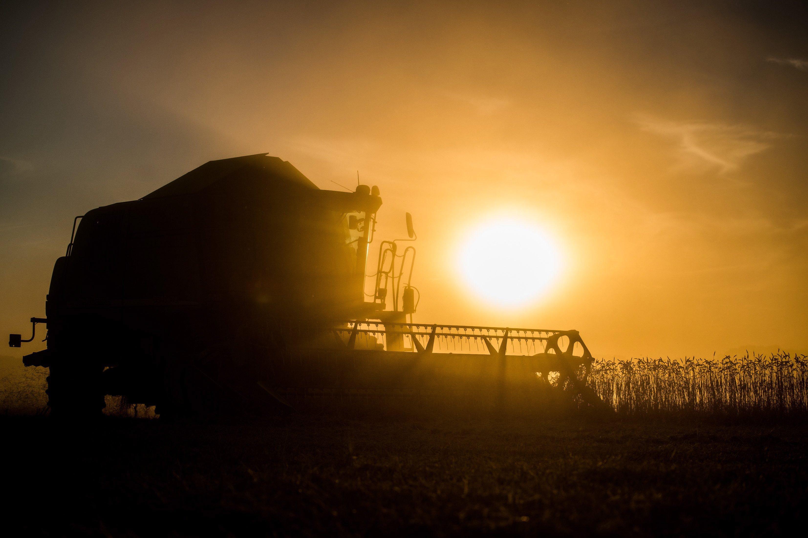 Az aszály sokkal nagyobb problémája a magyar mezőgazdaságnak, mint a koronavírus
