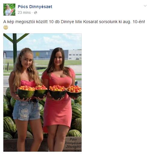 Pócs János és a Facebook 3242342. rész