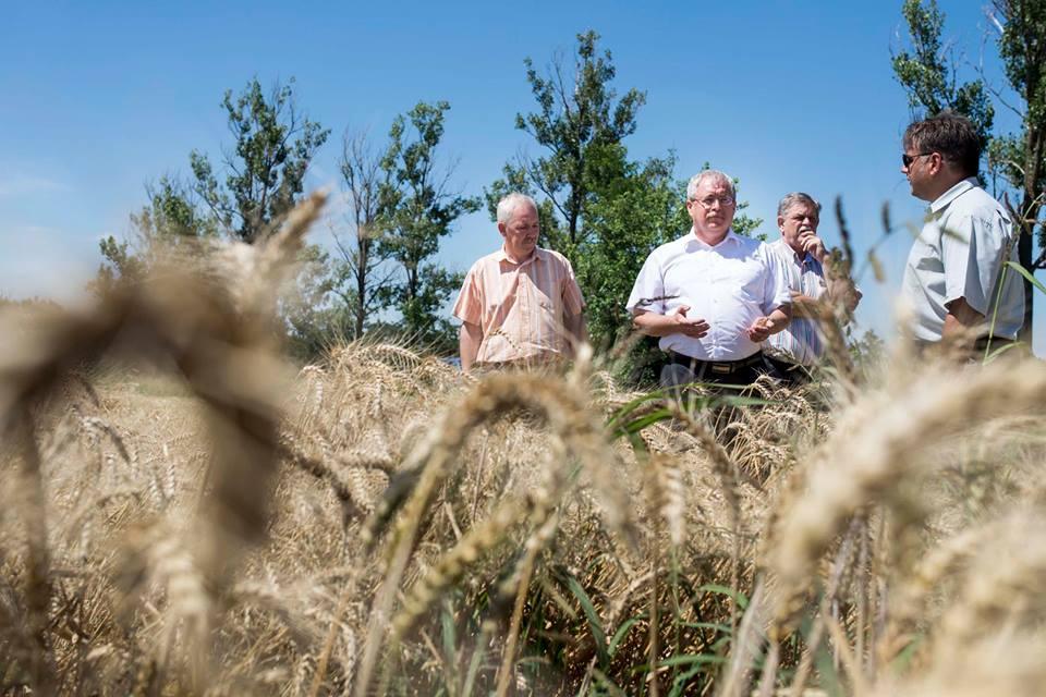 Elkészült Magyarország Digitális Agrárstratégiájának tervezete