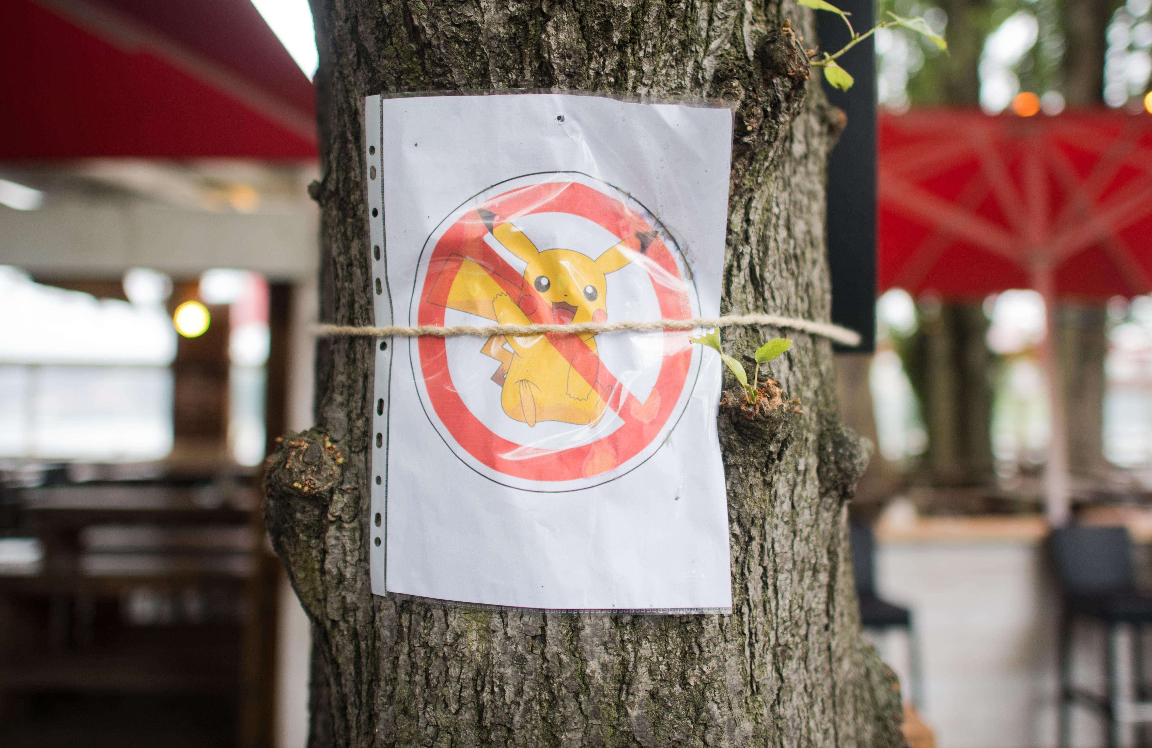 Kijárási tilalmat vezetnének be Hollandiában a pokémonoknak