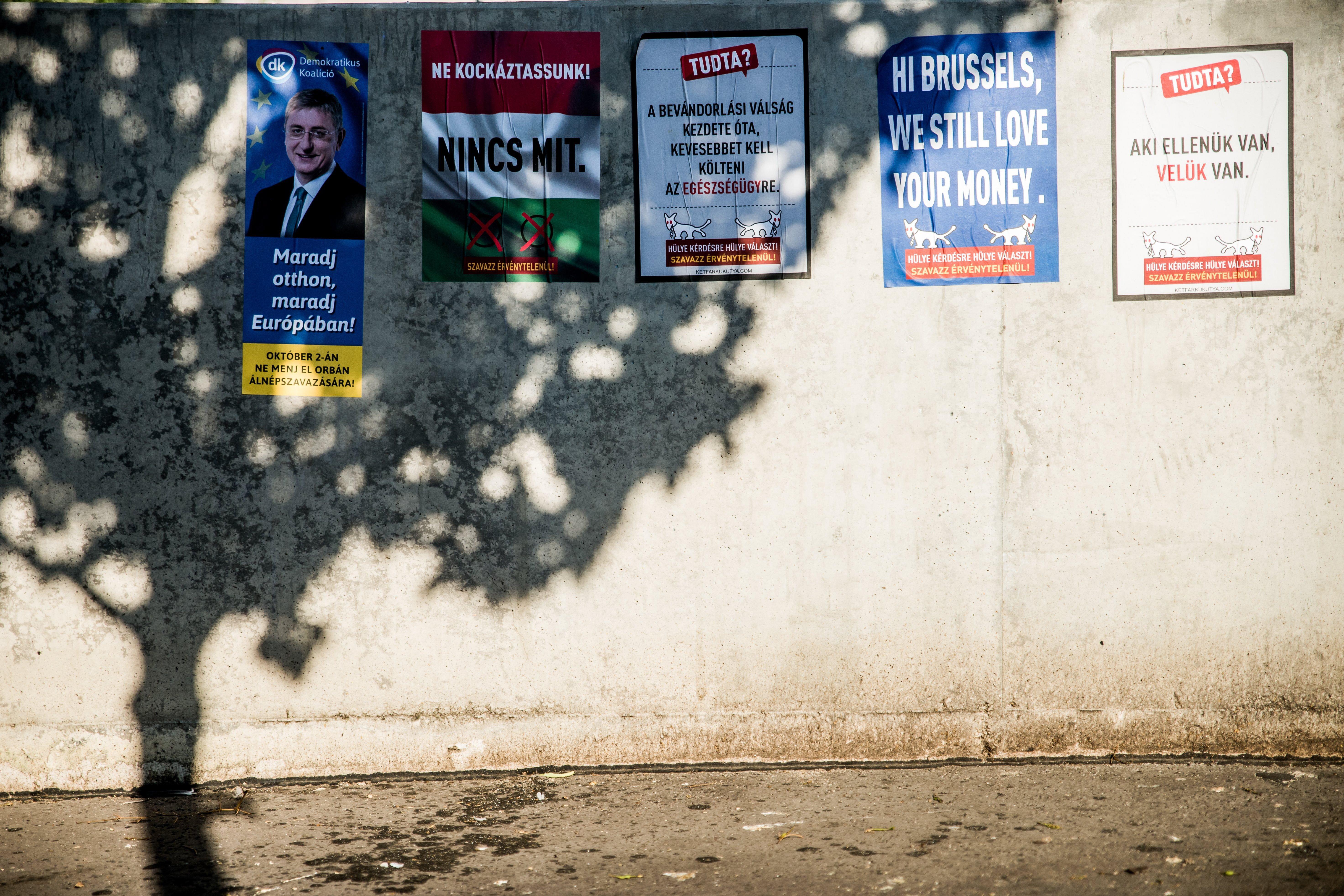 Plakátot rongált majd rátámadt a kutyapárt aktivistájára egy taxis Szentendrén