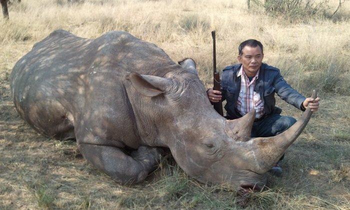Egy év alatt több mint 1000 orrszarvút öltek meg illegálisan Dél-Afrikában (megint)