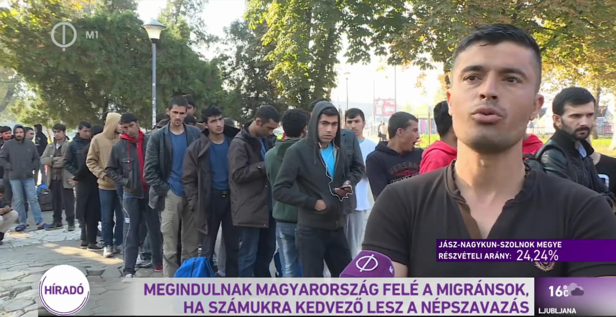Közmédia: A szerbiai migránsok alig várják, hogy elbukjon a népszavazás, és elárasszák Magyarországot