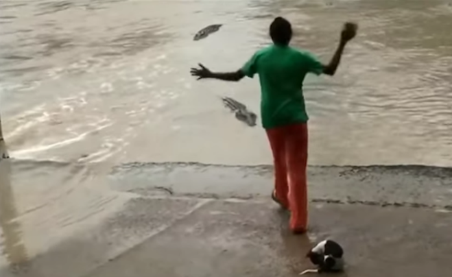 Flip-flop papucsával kergette el a krokodilt ez a leleményes nő