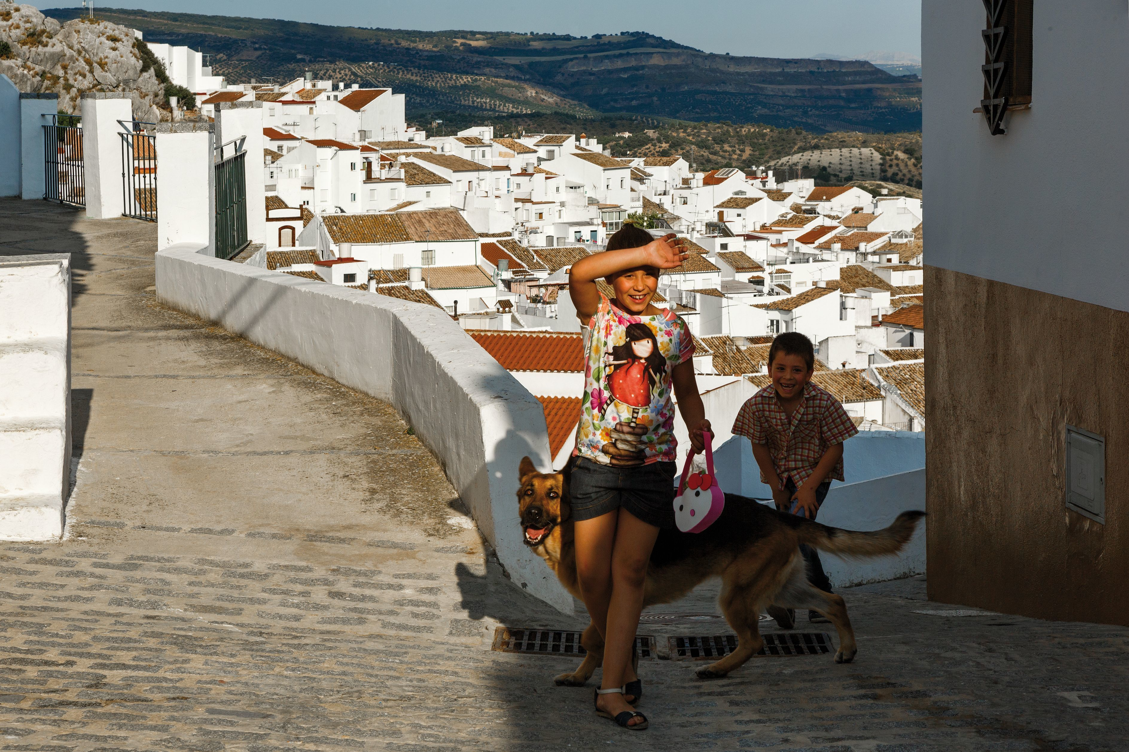 Egy spanyol városban mostantól DNS alapján azonosítják be a kutyaszar gazdáját