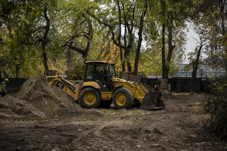 Nem fogod elhinni, mi történik Kanadában, mielőtt kivágnak egy városi fát