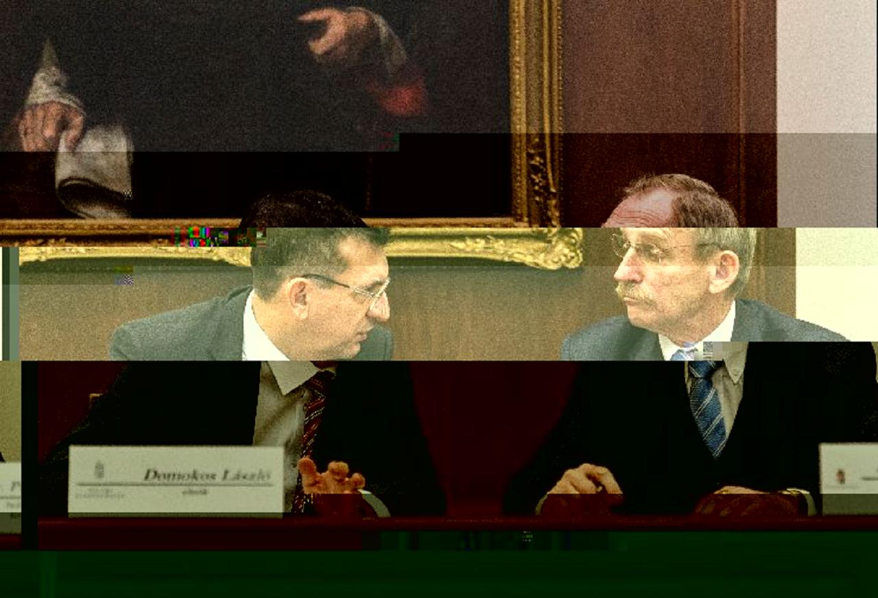 Magyarországon a korrupcióellenes harc azt jelenti, hogy politikai mandátum nélkül nem szabad lopni