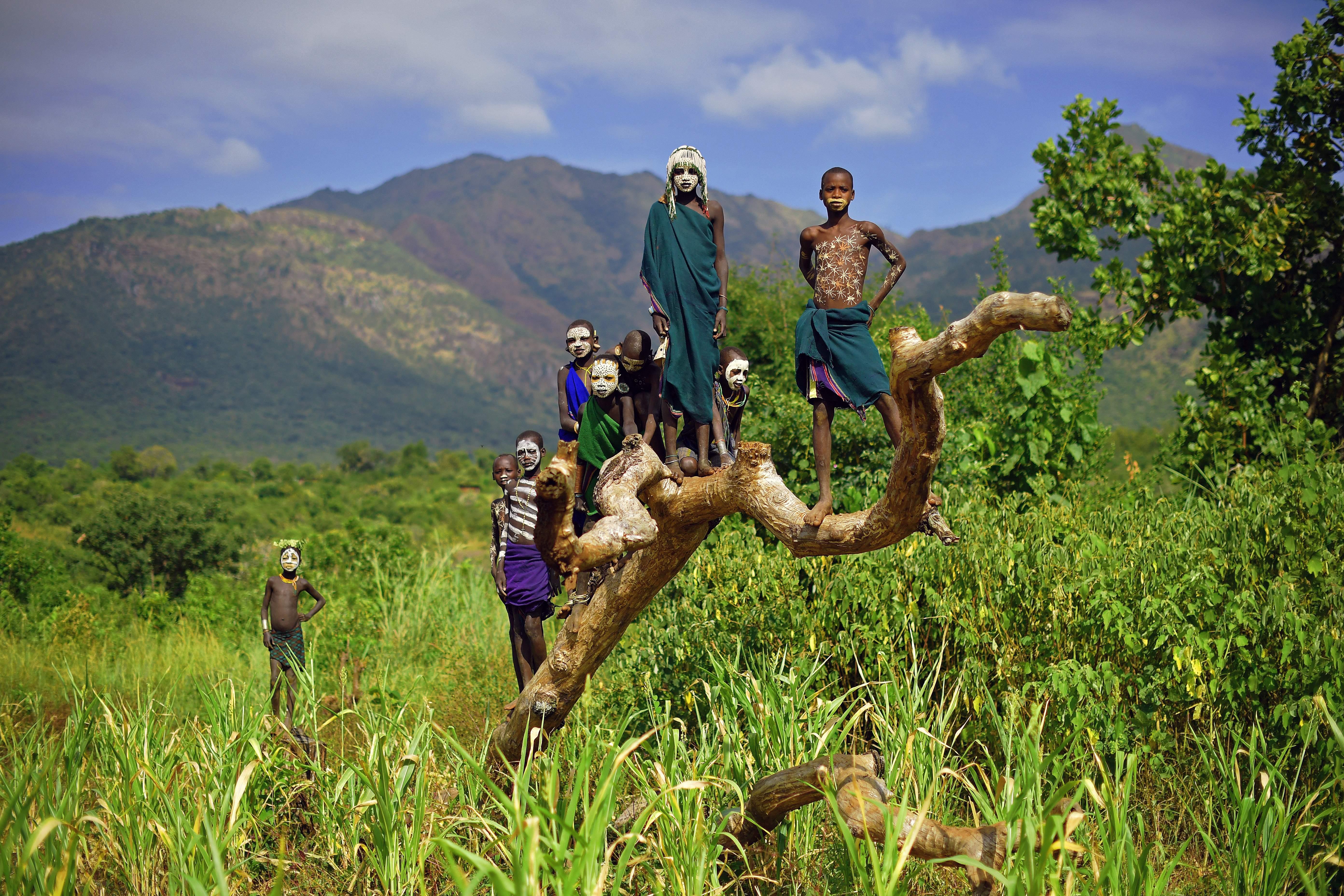 Egy napra bezárták a közhivatalokat Etiópiában, hogy mindenki elmehessen fát ültetni
