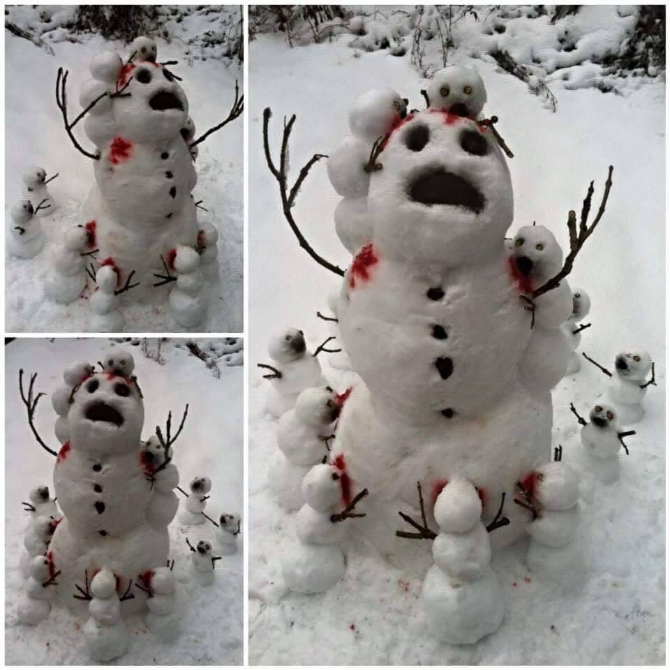 Ezektől a hóenberektől tutti beszarnák, MUTT4TOM