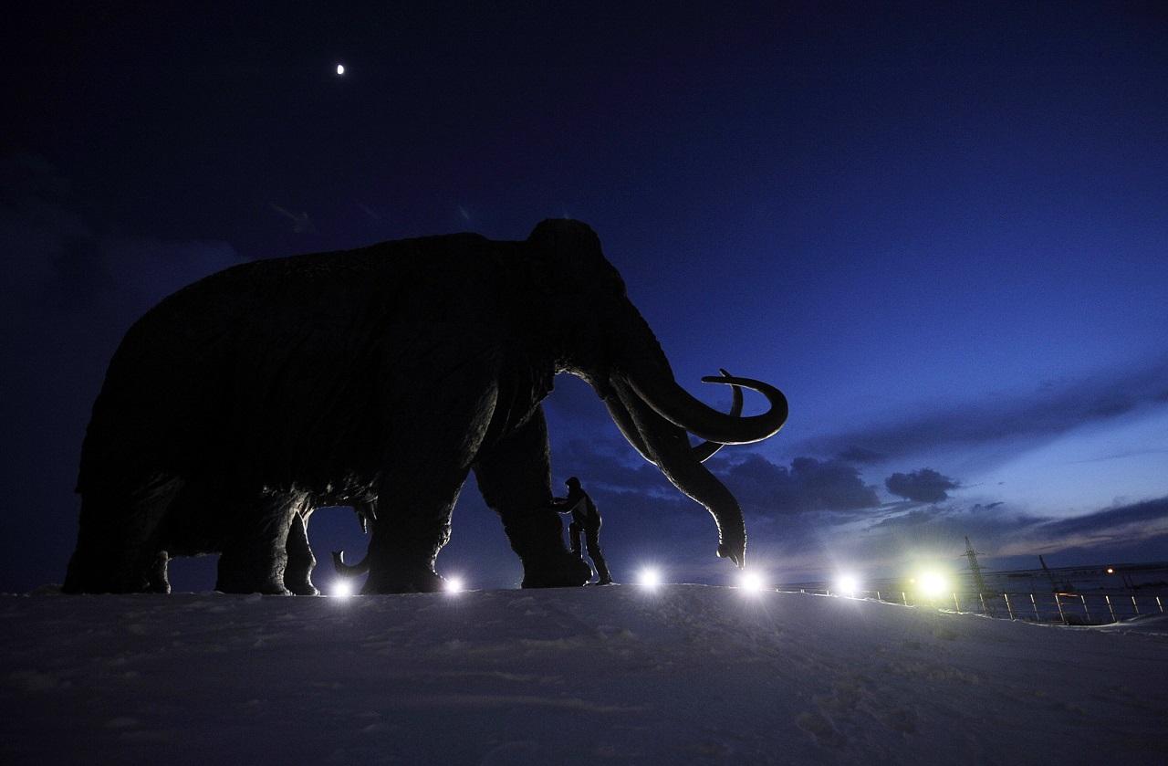 Kiderült, miért halt ki a mamut