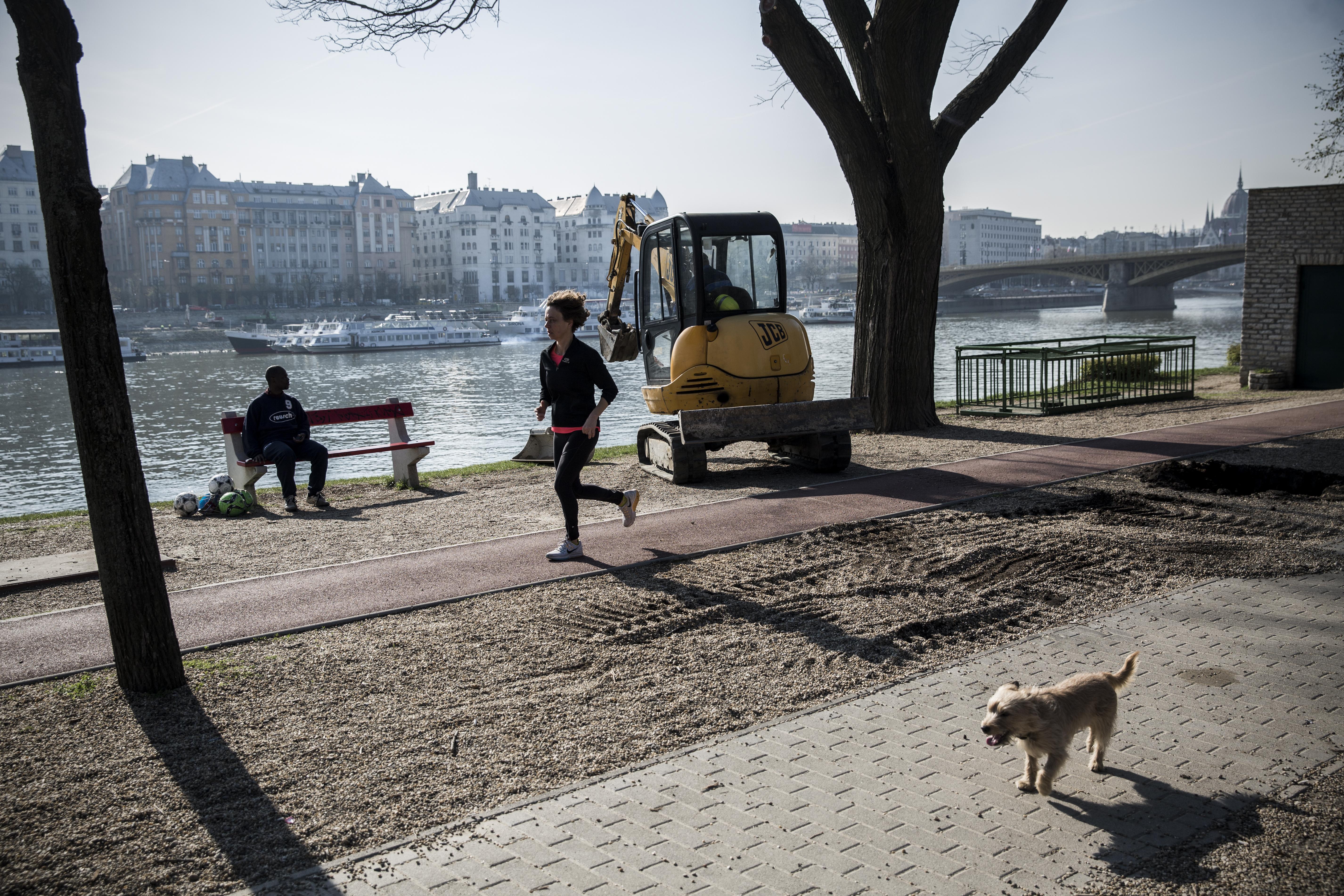 Margitszigeti futók kapták el a villamosról menekülő tolvajt