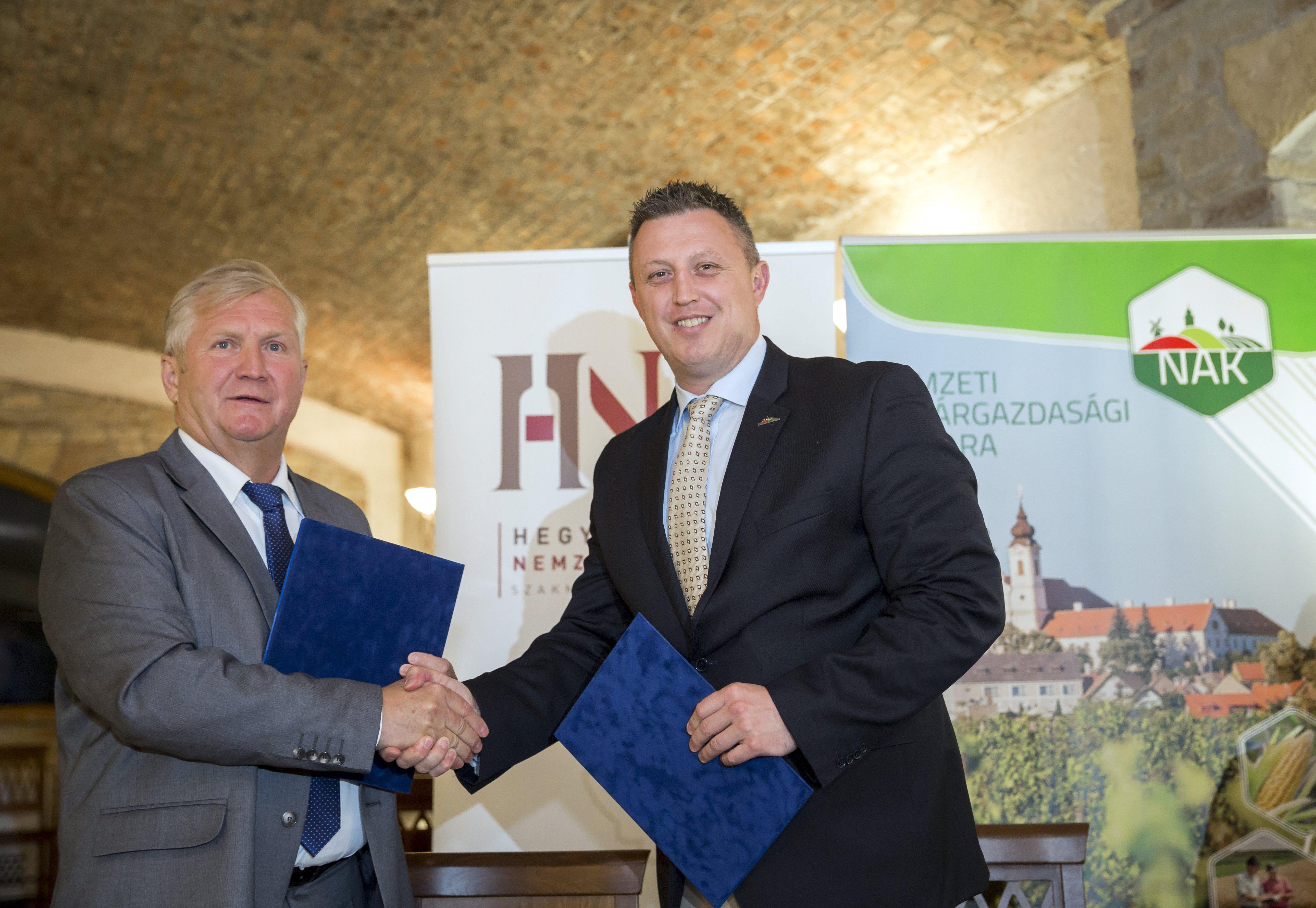 800 milliós egyedi támogatást ad a Magyar Turisztikai Ügynökség az ismert borász balatonboglári birodalmára