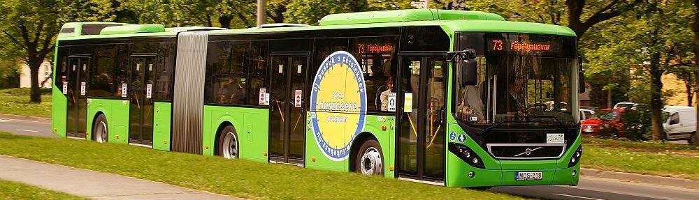 Hűtlen kezelés miatt nyomoznak Pécs busztársasága ellen