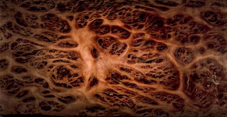 Egészen elképesztő és gyönyörű videó kerekedik abból, ha rétegenként szétvagdosunk egy farönköt