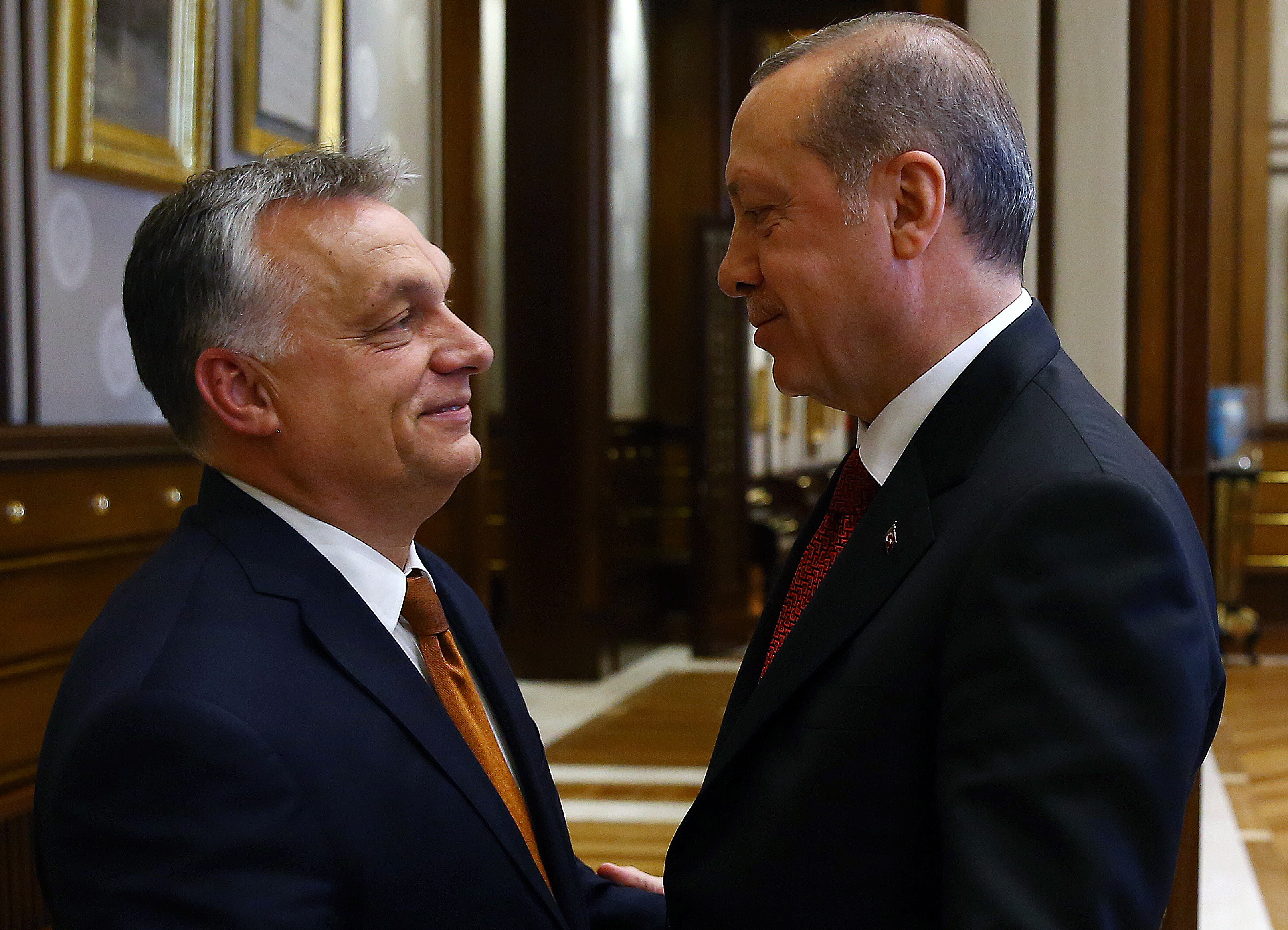 Erdogan hevesen követeli, hogy politikai gyűlést tarthasson Németországban