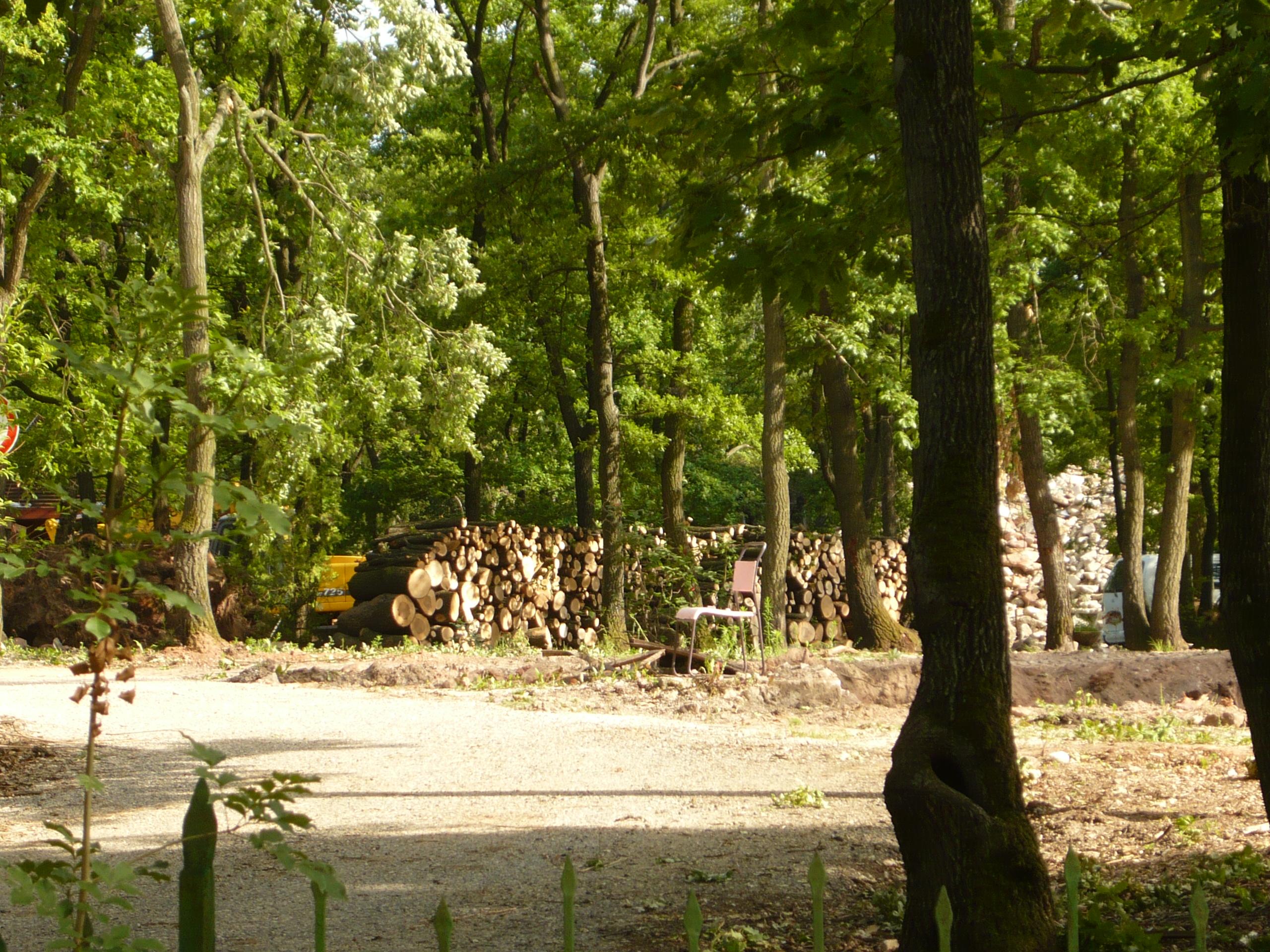 Erdőt irtottak Káptalanfüreden, hogy kézilabdacsarnokot építsenek Kocsis Máté kerületének üdülőjében