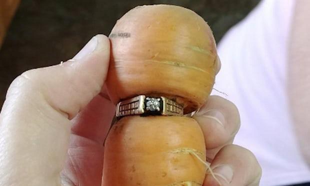 Egy répa köré szorulva találta meg 13 éve elveszített jegygyűrűjét egy kanadai nő