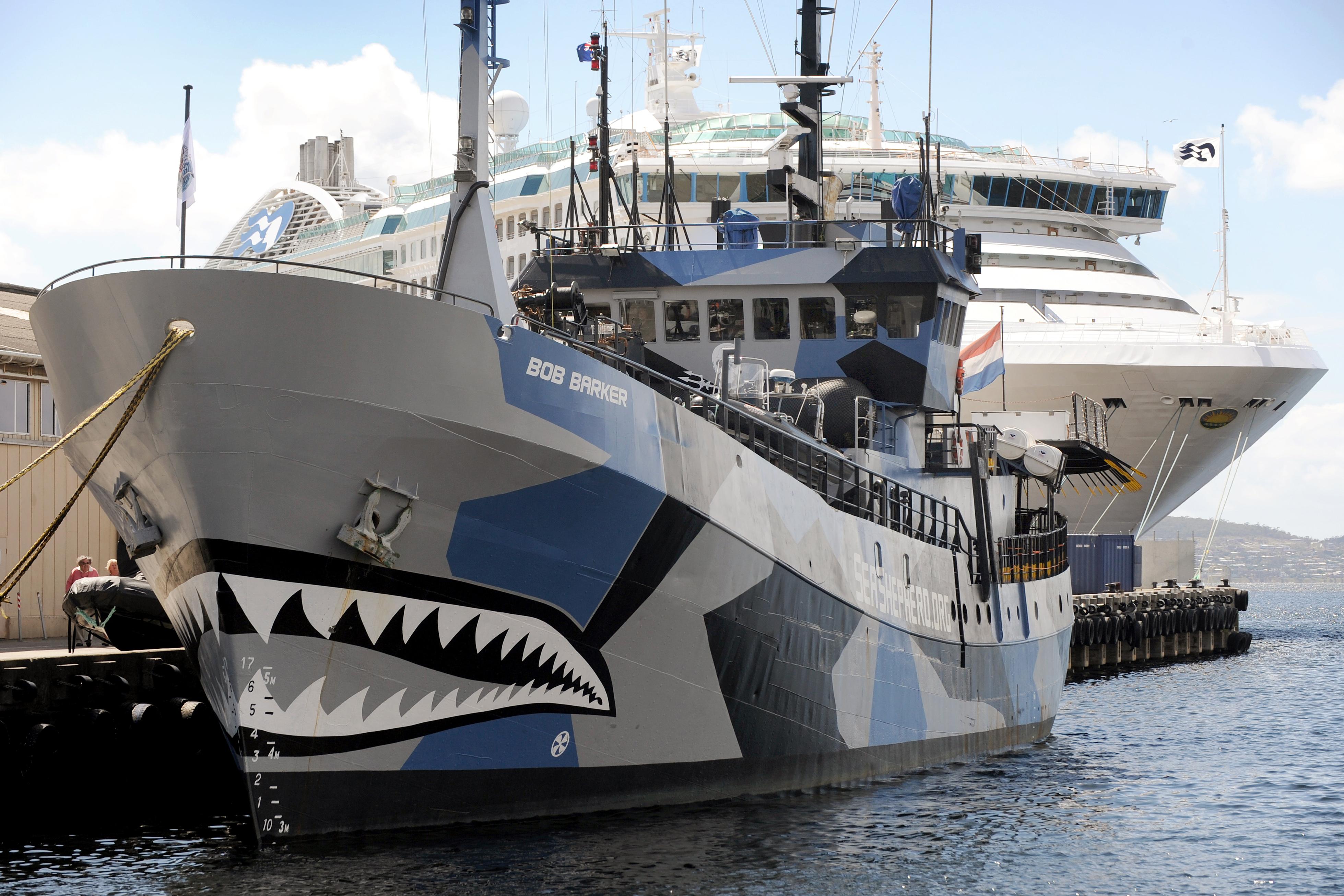 Nem üldözi idén a japán bálnavadászokat a Sea Shepherd