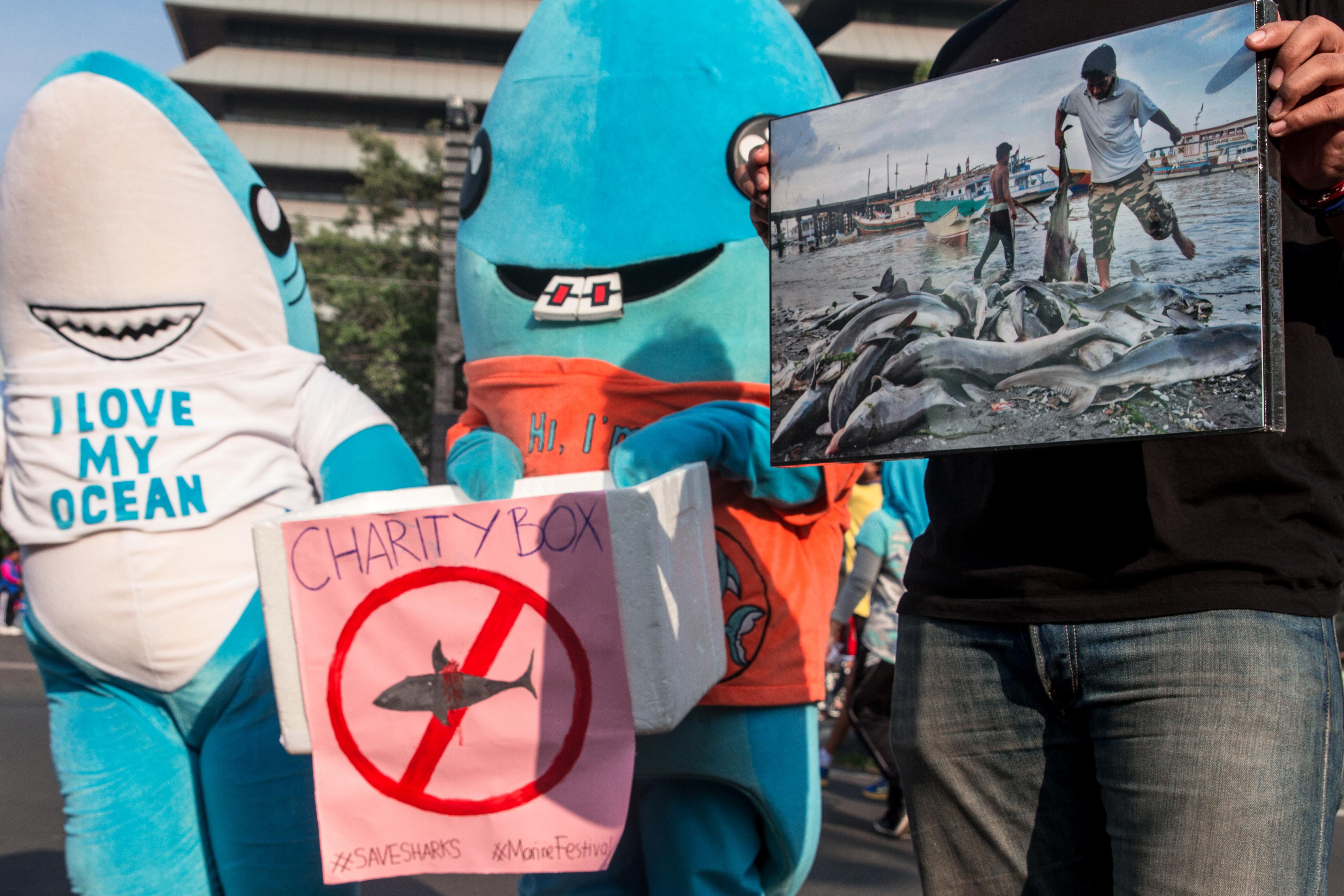 Cápajelmezes férfit  büntettek meg a burkatörvény miatt Ausztriában