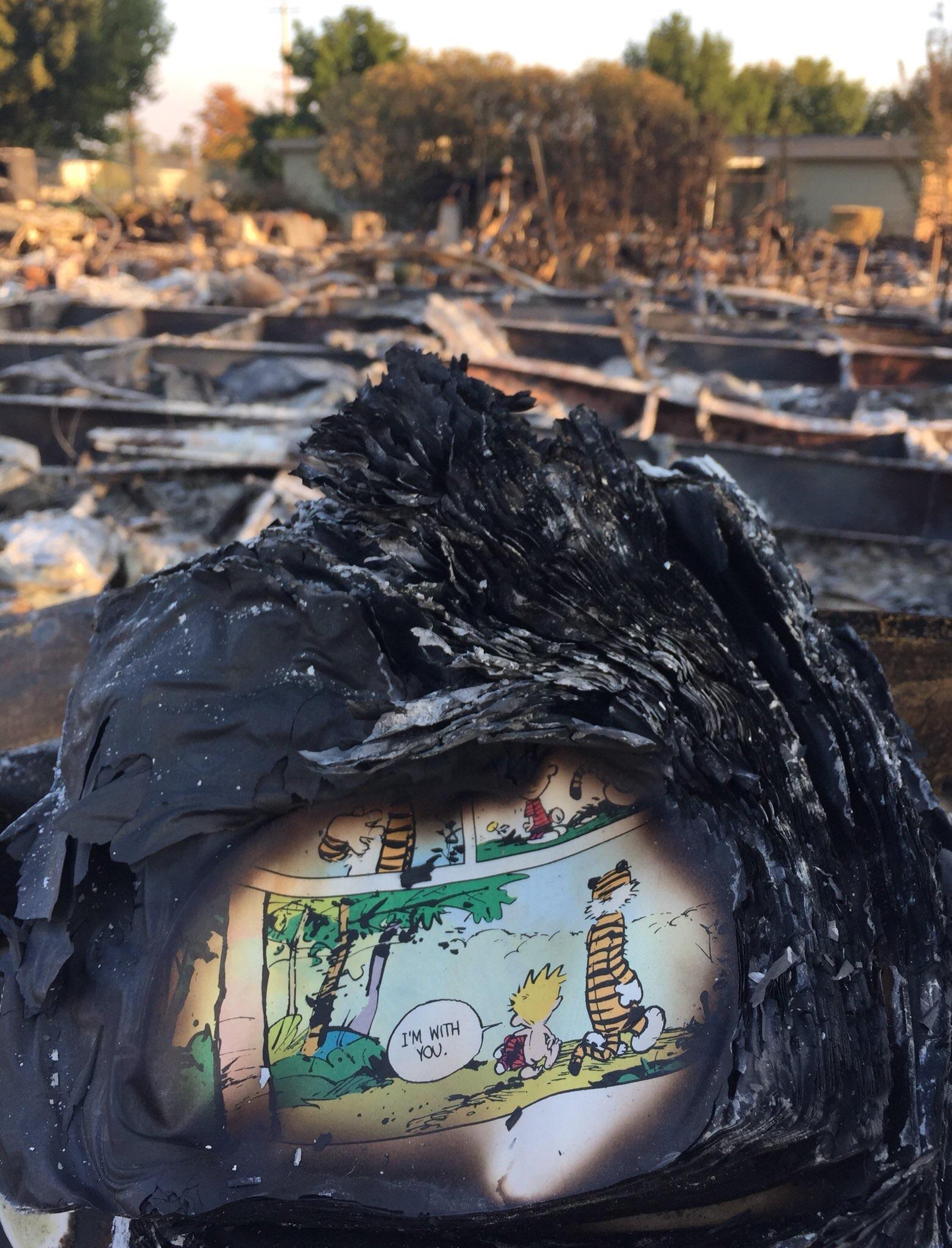 Ez az egyik legszomorúbb és legtökéletesebb kép a kaliforniai tűzvészről