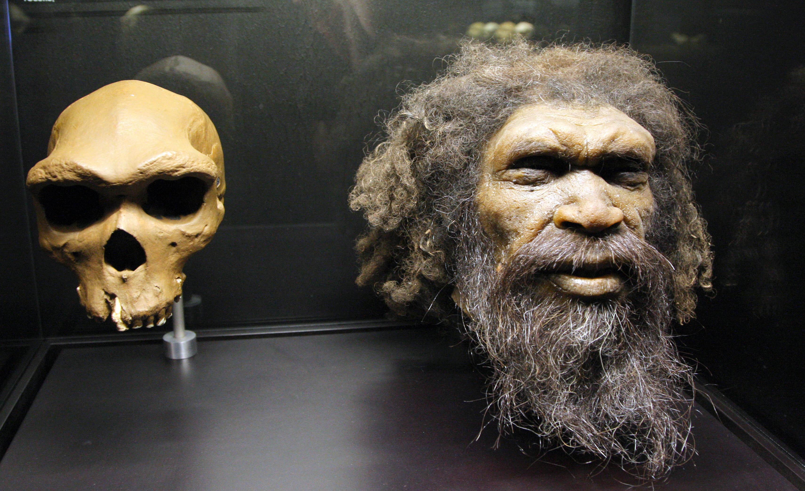 Ismeretlen eredetű, lopott csontokon alapulhat az ember elterjedésének történetét átíró felfedezés