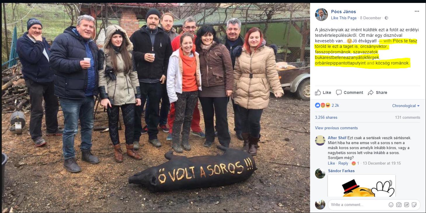 Zsák a foltját: trágár, románozó trollok és Pócs János csatáznak a pörzsölt SOROS-disznó szomorú fotóján