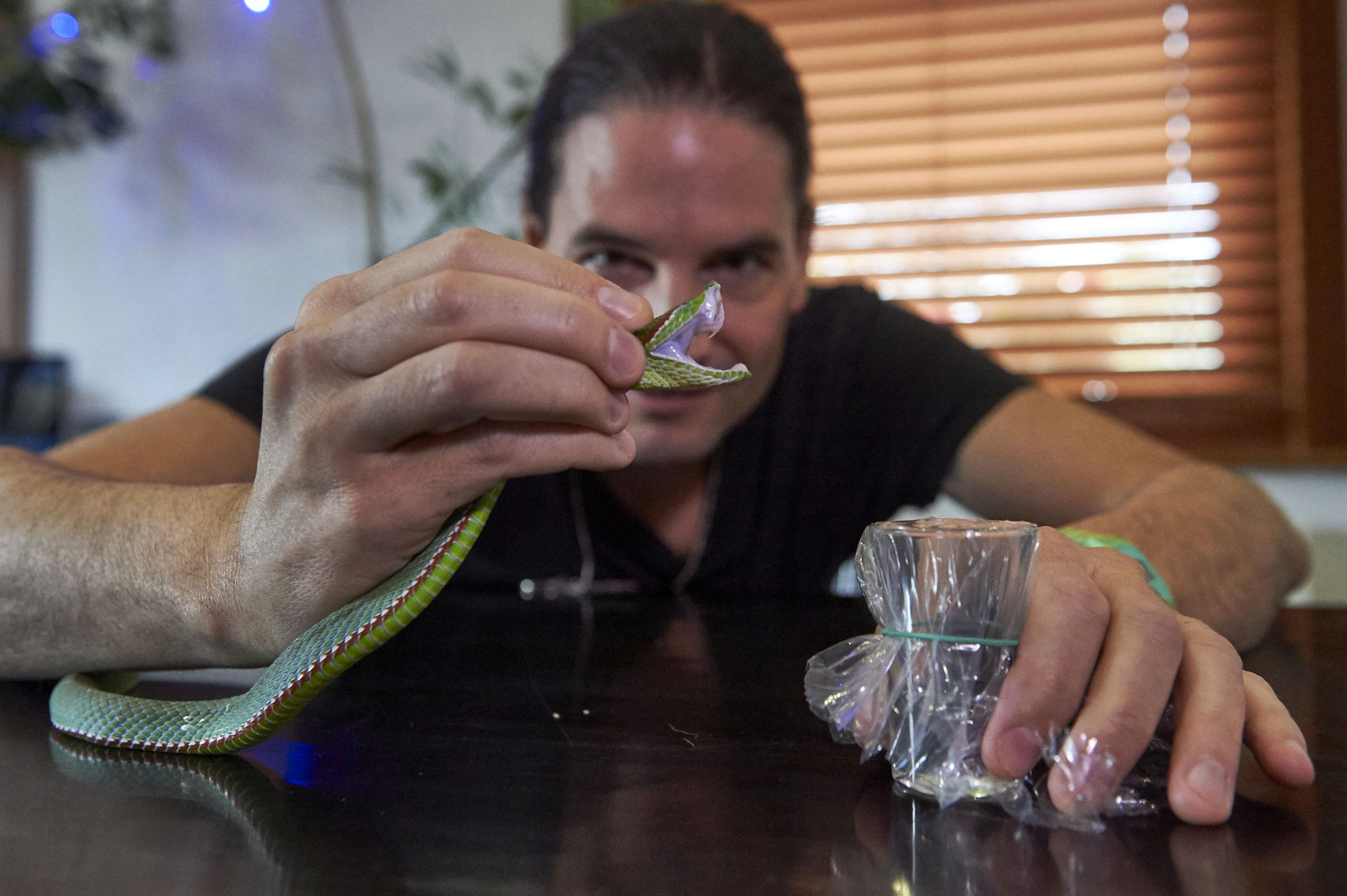 Dán tudósok antitestkönyvtárat készítettek a magát 25 éve hetente kígyóméreggel beoltó rockzenész csontvelő-mintájából