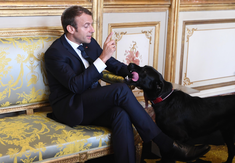 Álhírellenes törvényt fogadtak el Franciaországban