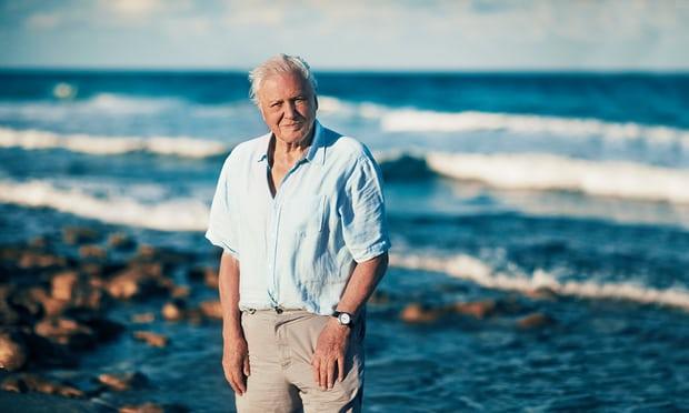 David Attenborough 6,2 millió követő után otthagyja az Instagramot