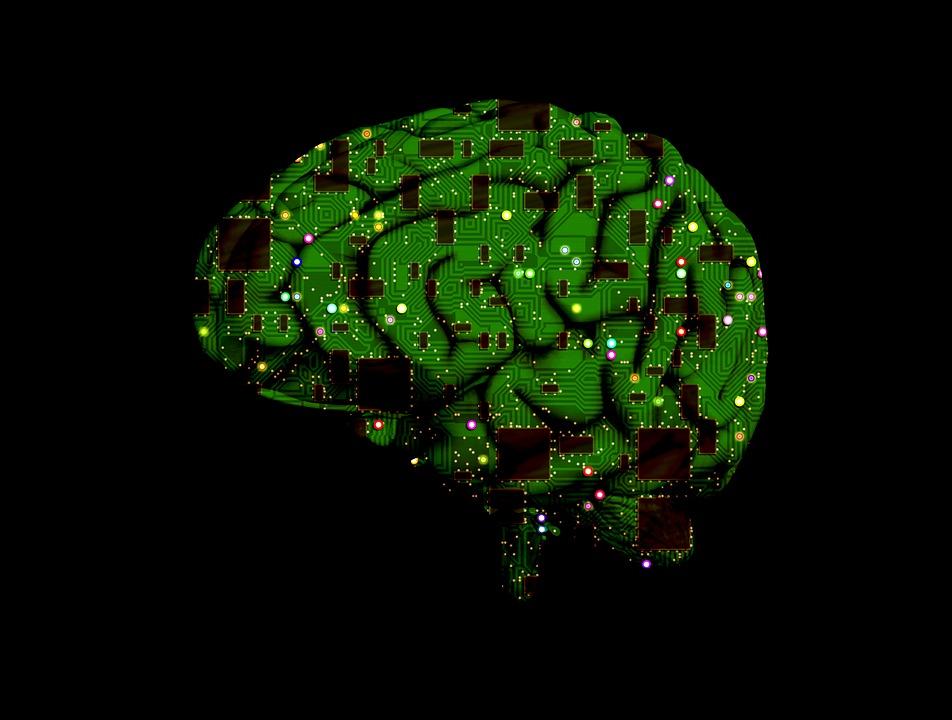 Károsodott idegsejteket javítottak ki két állatkísérletben