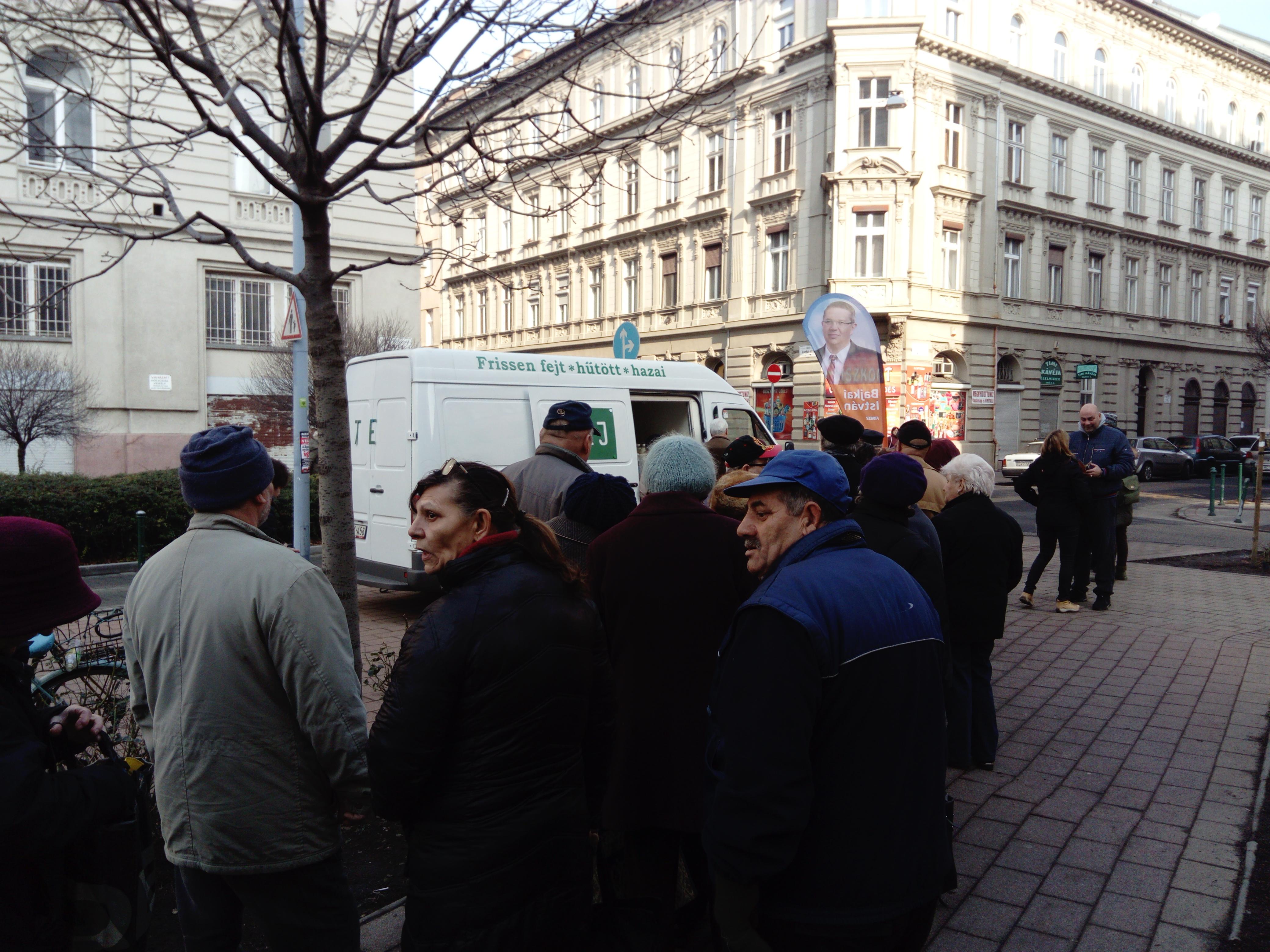 Tojásai után most a tejét is az embereknek adja a Fidesz jelöltje