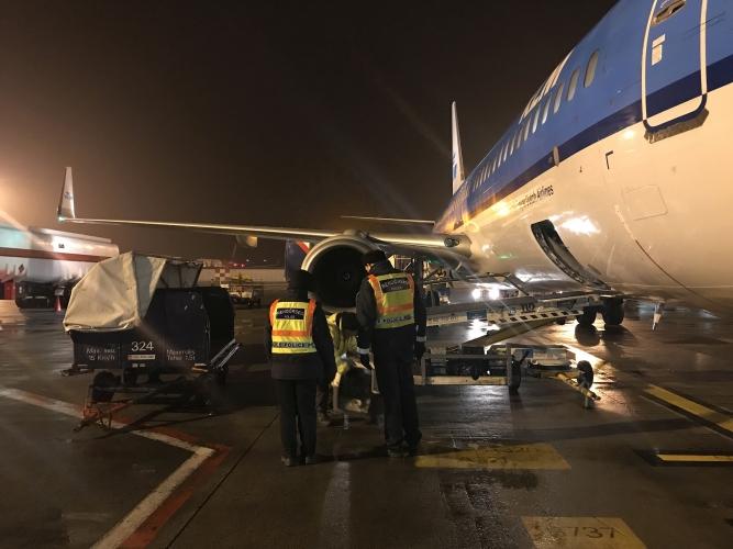 Csúszdán menekítették ki az utasokat egy repülőgépből Ferihegyen