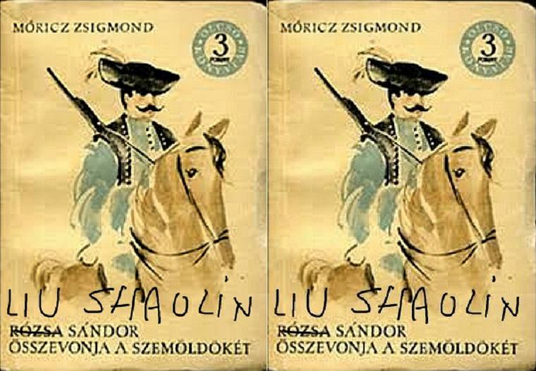 Móricz Zsigmond már könyvet is írt Liu Shaolin Sándorról